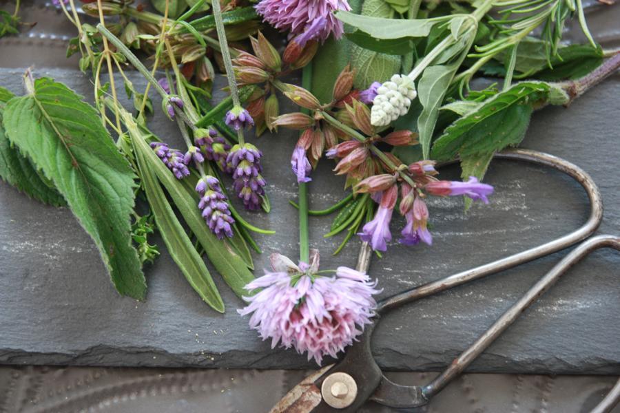 Kräuter mit Blüten, weisser Salbei, Gartenkräuter, Lavendelblüten, Kräuterschere, Servierplatte aus Schiefer. © Copyright Bettina Katscher 2020